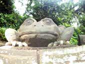 Stone frog keeps a lookout over the Chinese Garden