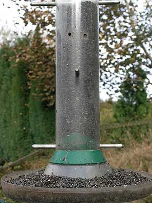Feed the Birds - Bird food, bird feeders and bird table suggestions