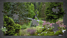 Cragside - Northumberland (OS Grid Ref. NU073021 Nearest Post Code NE65 7PU)