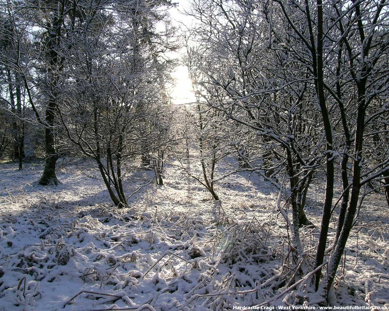 Winter Lake 3D Screensaver