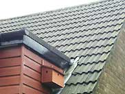 Sparrow terrace - room for 3 nesting pairs