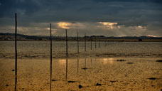 The Pilgrims' Causeway - Lindisfarne, Northumberland (OS Grid Ref. NU123425 Nearest Post Code TD15 2SE)