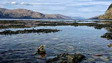 Loch Linnhe - Highland (OS Grid Ref. NN039657 Nearest Post Code PH33 6SJ)