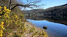 Loch Oich - Scottish Highlands (OS Grid Ref. NN299984)
