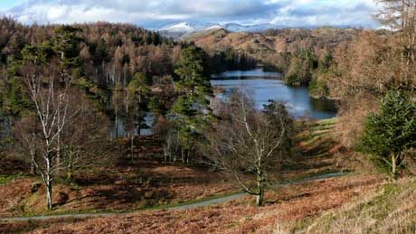 Tarn Hows - Lake District National Park (OS Grid Ref. SD329995 Nearest Post Code LA22 0PP)