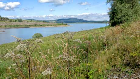 Clatteringshaws Loch - Dumfries and Galloway