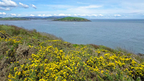 Hestan Island from Balcary Point, Dumfries & Galloway (OS Grid Ref. NX827492 Nearest Post Code DG7 1QZ)