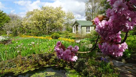 Kirkcudbright, Broughton House Garden, Dumfries & Galloway (OS Grid Ref. NX681510 Nearest Post Code DG6 4JX)